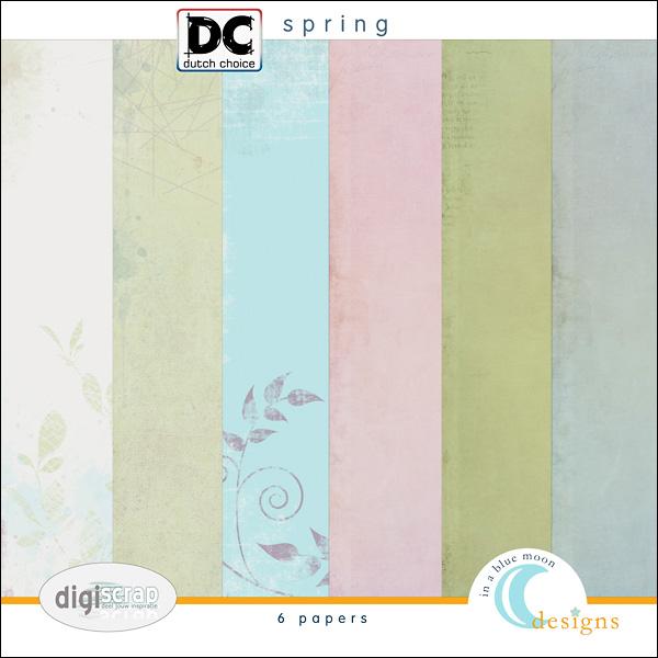 00_bm_dcmei_spring_paper