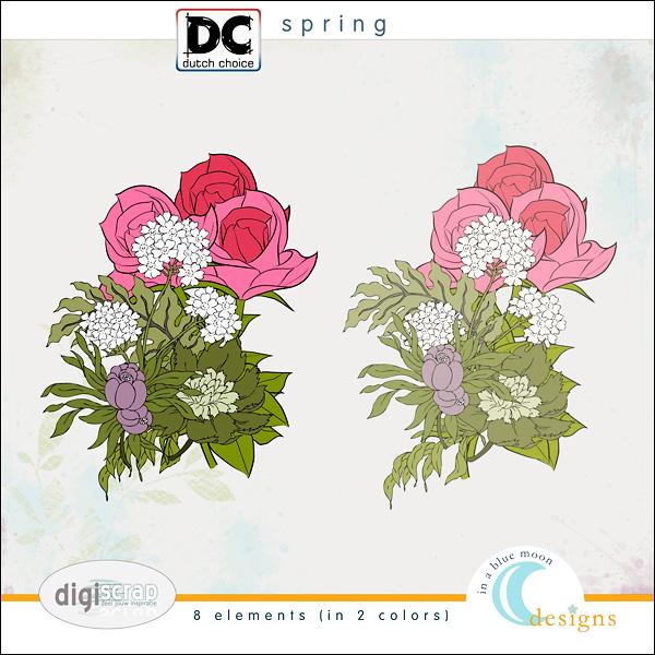 00_bm_dcmei_spring_elements